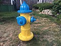 Yellow and Blue Fire Hydrant.jpg