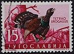 Yugoslavian stamp with Tetrao urogallus 1958.jpg