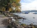 Zürichhorn - Seefeldquai 2013-10-26 17-24-03 (P7700).JPG