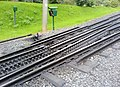 Zahnradbahn Bonn.JPG