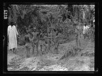 Zanzibar. Natives treading mud for making bricks LOC matpc.17666.jpg