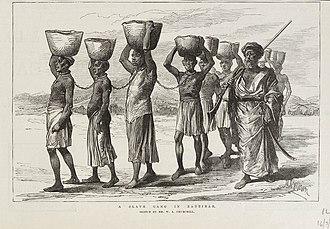 Slavery in Africa - A Zanj slave gang in Zanzibar (1889).