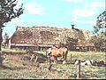 Zijgevel PBK Miwaco, Westerbork - Westerbork - 20507004 - RCE.jpg