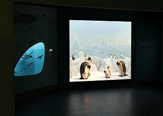 University of Copenhagen Zoological Museum - Image: Zoologisk museum