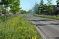 Zuidpoldersingel - Delfgauw - 2011 - panoramio.jpg