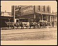 """Ox Power."" Six oxen pulling wagon of grain sacks on unidentified street.jpg"