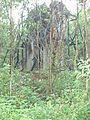 Đồng Dương ruins.jpg