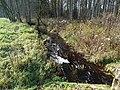 Žirnelis, upė prie Pašvenčio.JPG