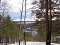 Вид на Павловку - panoramio (1).jpg