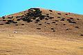Гора Табунная.JPG