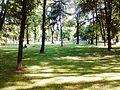 Градски парк 22.jpg