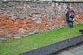 Дрогобич.Місце страти мирних громадян німецько-фашистськими загарбниками.Фото.JPG