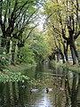 Канал Гольца (Верхнесадский) - 7.jpg