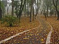 Маріїнський парк (Київ) 001.JPG