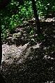 Парк Берёзовая роща в Киеве. Фото 31.jpg