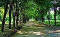 Парк Перемоги - 4.jpg