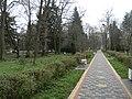 Парк курорту Любінь Великий.jpg