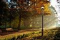Ранкові промені в парку ім.Чекмана.jpg