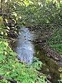 Троицкий ручей (вверх по течению от 23-го квартала).jpg