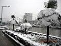 合肥长江西路雪景 - panoramio.jpg