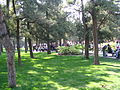 景山公园 草坪 - panoramio.jpg