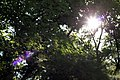 紫竹院公园 - panoramio (3).jpg