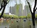 郁金花节里的马鞍池公园 - panoramio.jpg