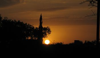 03 Sunsets.JPG