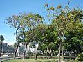 0822jfIntramuros Manila Landmarks Buildingsfvf 33.jpg