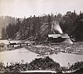 1191. Little River Lumber Mills, looking East, Mendocino County.jpg