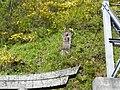1 Chome-9 Minato, Okaya-shi, Nagano-ken 394-0044, Japan - panoramio (1).jpg