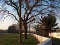 20110117Hochwasserschutz Altlussheim.jpg