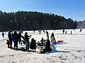 2012 'Seegfrörni' - Türlersee - Hausen am Albis 2012-02-18 12-42-54 (SX230).JPG
