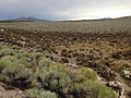2014-07-31 15 43 33 Mud and other remnant debris from flash flooding along U.S. Route 93 in southern Elko County, Nevada.JPG