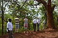 2014 Old Moschi in Tansania, Hinrichtungsbaum des Chief Meli mit Grabstätte.jpg