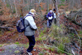 2018-12-22-December-watercolors.-Hike-to-the-Ratingen-forest. File-22.png