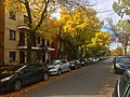 20181014 - 04 - Montreal (Little Italy).jpg
