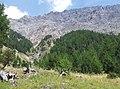 23030 Valfurva, Province of Sondrio, Italy - panoramio (6).jpg
