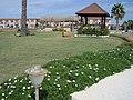35930 Alaçatı Belediyesi-Çeşme-İzmir, Turkey - panoramio (32).jpg