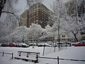 370RSD in winter from the park.jpg