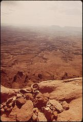 A Gopher Snake Crawls Along the Canyon's Rim at the Needles Overlook, 05-1972 (3814961066).jpg
