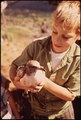 A YOUNG BOY TRIES TO SAVE AN INJURED SEAGULL - NARA - 545214.tif