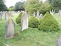 A guided tour of Broadwater ^ Worthing Cemetery (40) - geograph.org.uk - 2339514.jpg