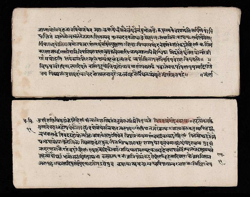 A section of the Carakasamhita - sutrasthana Wellcome L0040423