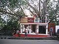 A small Siva Temple Jammu1.JPG