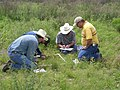 A team of NRCS Texas employees collects detailed vegetative and soil data in the field to develop Ecological Site Descriptions. (Photo by David Hinojosa, NRCS Texas) (24483168634).jpg
