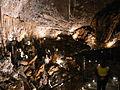 A treasure in Grotta Gigante.jpg