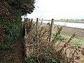 A very narrow footpath - geograph.org.uk - 1513753.jpg