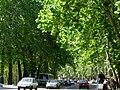 Abbasabad, Tehran, Tehran, Iran - panoramio - Behrooz Rezvani (37).jpg