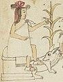 Acacitli en el Códice Azcatitlan (2).jpg